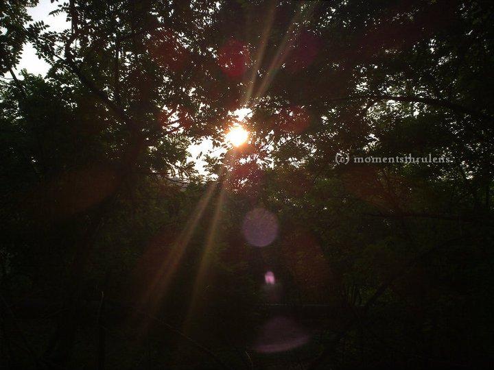 sunandreflection