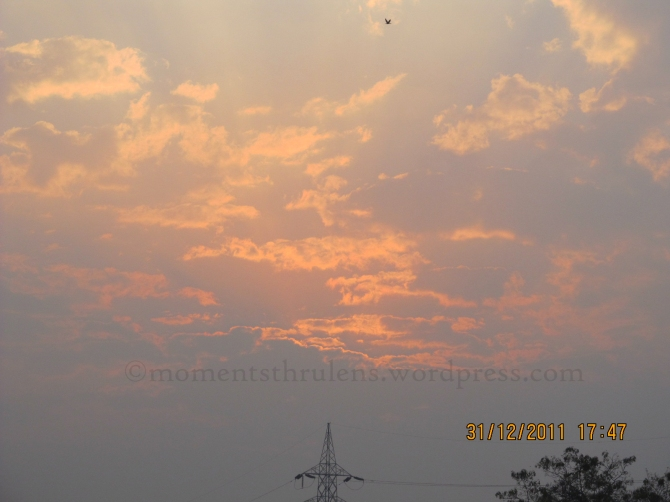 Its a pic clicked on Dec 31, 2011, my very last pic of year 2011. Outstanding thing was the Bird on the top of the frame as I found it fascinating like Bird also in hurry to go back to home to celebrate the new year with the family.