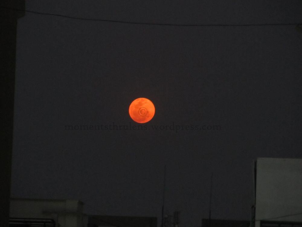 Holi Moon