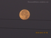 Moon resting on the Wire