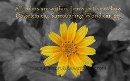 Colors Are within