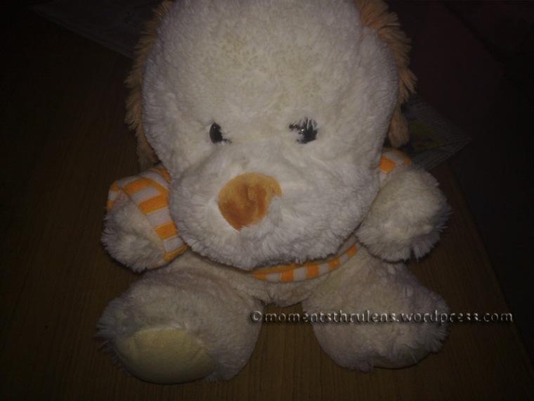My Sweet Lil Teddy Bear