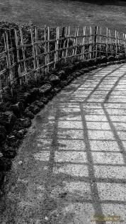 Light n Shadow